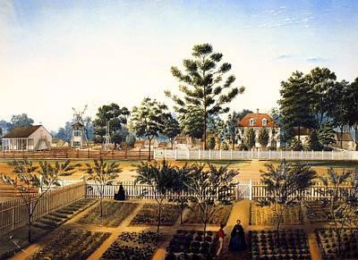 Southern Plantation Painting - Bois De Fleche Plantation Louisiana 1861 by Mountain Dreams