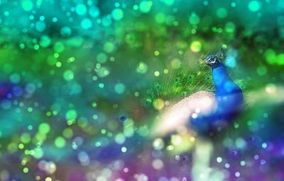 Peacock Digital Art - Bokeh Peacock by Audrey Jeanne Roberts