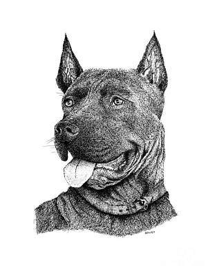 Friend Drawing - Bolo Black And White Drawing With Pen And Ink Of A Dog by Mario Perez