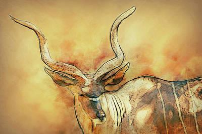 Bongo Print by Jack Zulli