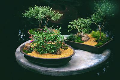 Miniature Digital Art - Bonsai Island by Jessica Jenney