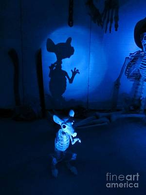 Boo The Mouse Original by John Malone