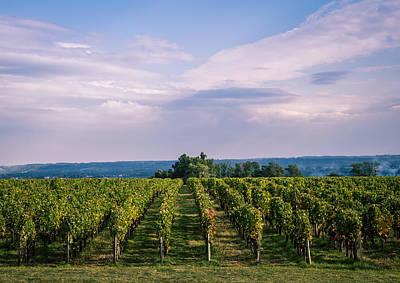Bordeaux Vineyard Print by Diane M Evans