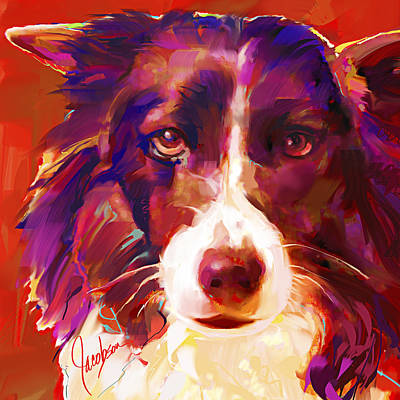 Dogs Painting - Border Collie by Jackie Jacobson