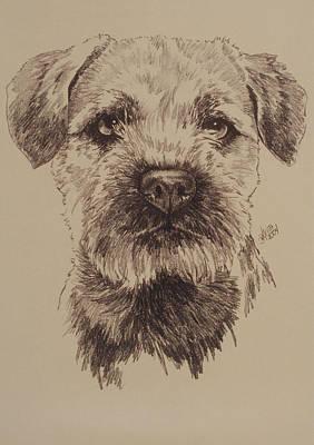 Purebred Drawing - Border Terrier by Barbara Keith