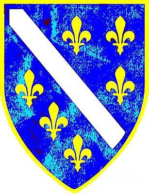 Bosnae Photograph - Bosnia Coat Of Arms by Jasmin Hrnjic