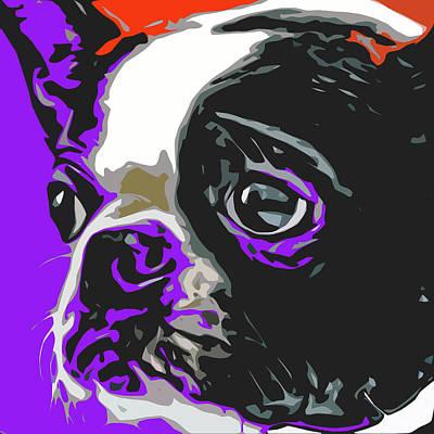 Pup Digital Art - Boston Cutie by David G Paul
