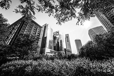Boston Downtown City Buildings Through Trees Print by Paul Velgos