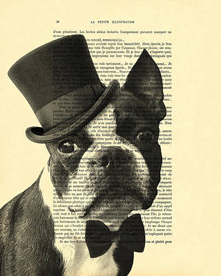 Boston Terrier, Animals In Clothes, Portrait Print by Madame Memento