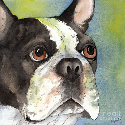Boston Terrier Close Up Print by Cherilynn Wood