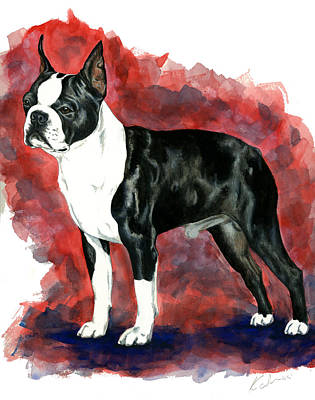 Dog Art Painting - Boston Terrier by Kathleen Sepulveda