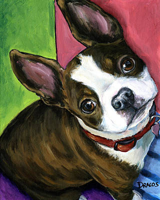 Boston Painting - Boston Terrier Looking Up by Dottie Dracos