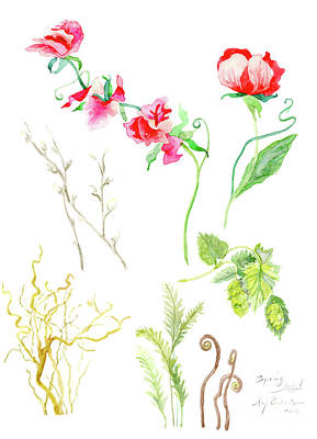 Nature Study Painting - Botanical Nature - Spring Study 1 by Audrey Jeanne Roberts
