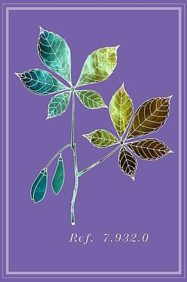 Fruit Digital Art - Botany 3 by Alberto RuiZ