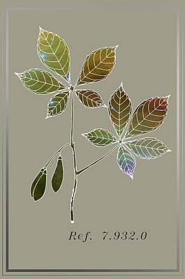 Fruit Digital Art - Botany 5 by Alberto RuiZ