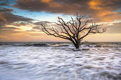Botany Bay Edisto Island Sc Boneyard Beach Sunset Print by Dave Allen