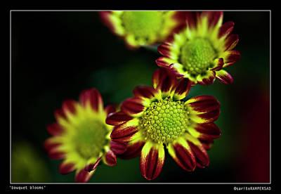 Bouquet Blooms Print by Sarita Rampersad