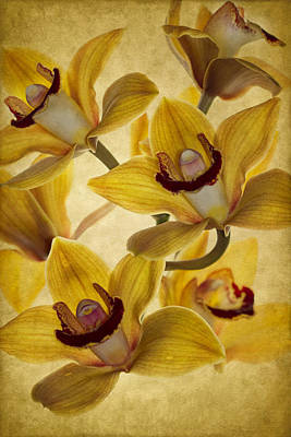 Bouquet Print by Rebecca Cozart