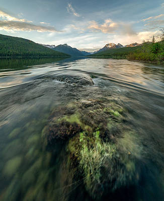Moss Photograph - Sunset // Bowman Lake, Glacier National Park  by Nicholas Parker