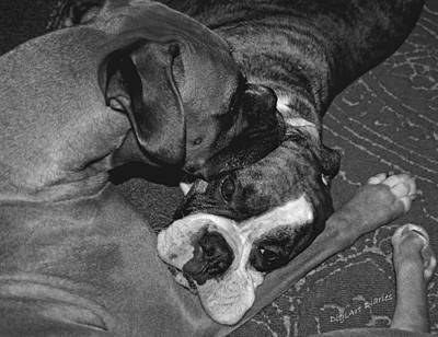 Adorable Digital Art - Boxer Buddies by DigiArt Diaries by Vicky B Fuller