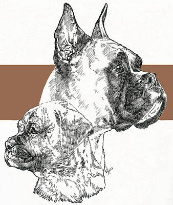 Boxer -cropped- Father And Son Print by Barbara Keith