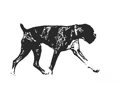 Boxer Drawing - Boxer Dog Tee by Edward Fielding