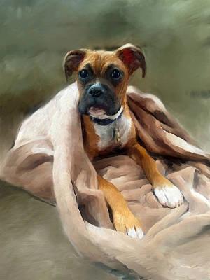 Boxer Portrait Original by Enzie Shahmiri