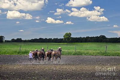 Amish Photograph - Boy And Team In Field Near Shipshewana by David Arment
