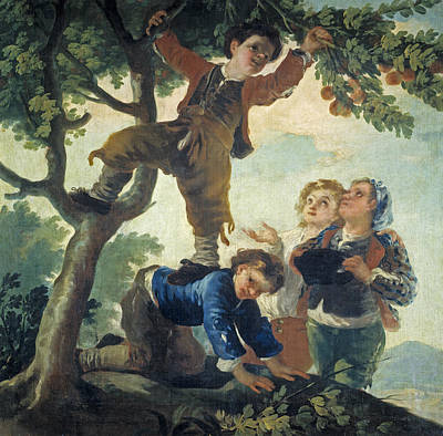 Fruit Tree Art Painting - Boys Catching Fruit by Francisco Goya