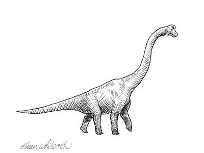 Extinct And Mythical Drawing - Brachiosaurus Black And White Dinosaur Drawing  by Karen Whitworth