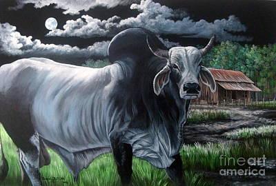 Brahma Bull- Okeechobee Moonlight Print by Daniel Butler