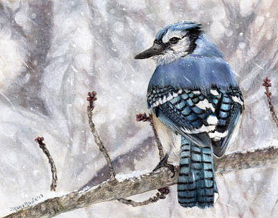 Bluejay Drawing - Braving The Storm by Shana Rowe Jackson