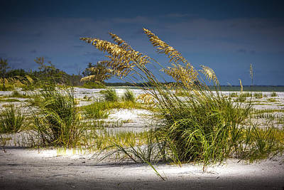 Sand Dunes Photograph - Bright Shore by Marvin Spates