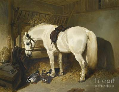 British A Grey Pony In A Stable With Ducks Print by John Frederick Herring