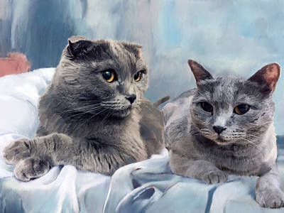 British Shorthair Cats Original by Enzie Shahmiri