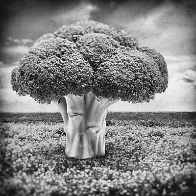 Broccoli Tree Print by Wim Lanclus