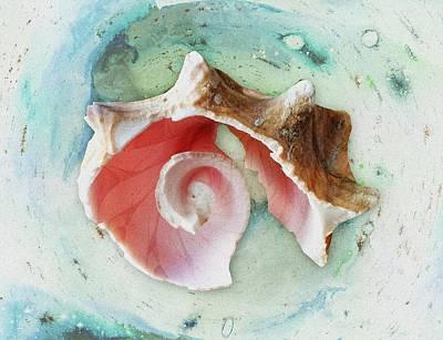 Broken Shell Print by Anastasiya Malakhova