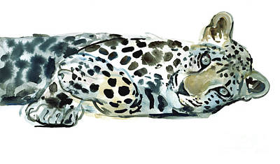 Leopard Drawing - Broken Siesta by Mark Adlington