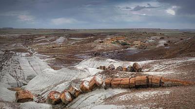 Colorado Plateau Photograph - Broken Tree by Joseph Smith