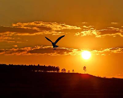 Bronze Sunset Original by Adele Moscaritolo