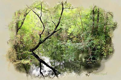 Swamp Painting - Brooker Creek Nature Preserve by Diana Voyajolu