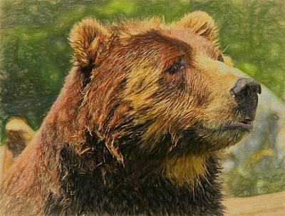 Kodiak Painting - Brown Bear Portrait by Dan Sproul