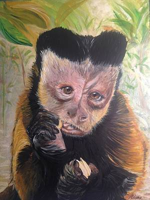 Brown Capuchin Monkey Murphy Brown Half Of All Proceeds Go To Jungle Friends Primate Sanctuary Original by Helene Thomason