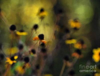 Photograph - Brown Eyed Susan  by Andrea Kollo