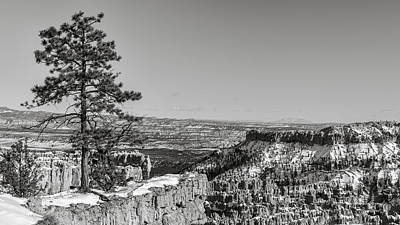 Bryce Canyon National Park Photograph - Bryce Sentinel by Joseph Smith