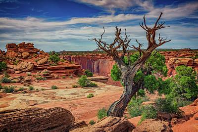 The Plateau Photograph - Buck Canyon Overlook by Rick Berk