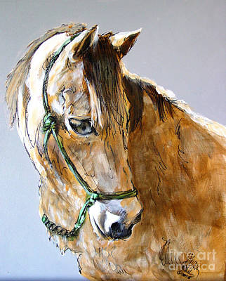 Buckskin Horse Painting - Buck Of The Morgan Horse Ranch Point Reyes National Seashore by Paul Miller