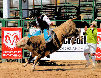 Of Rodeo Bucking Bulls Photograph - Bucking Bull Dangers by Cheryl Poland