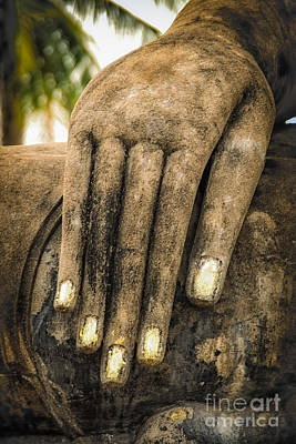 Buddha Hand Print by Adrian Evans