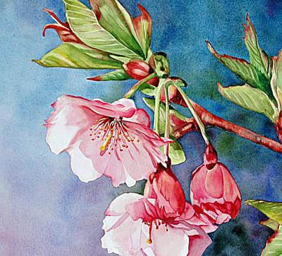 Sakura Painting - Budding Blossoms by Diane Fujimoto